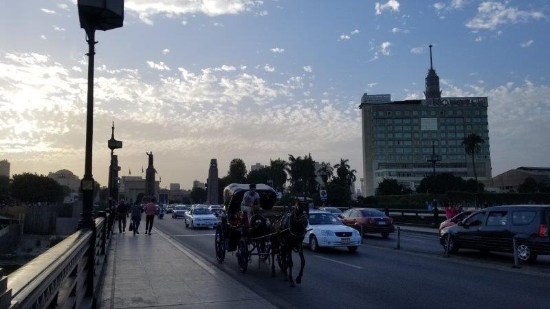 カイロの中州を走る馬車