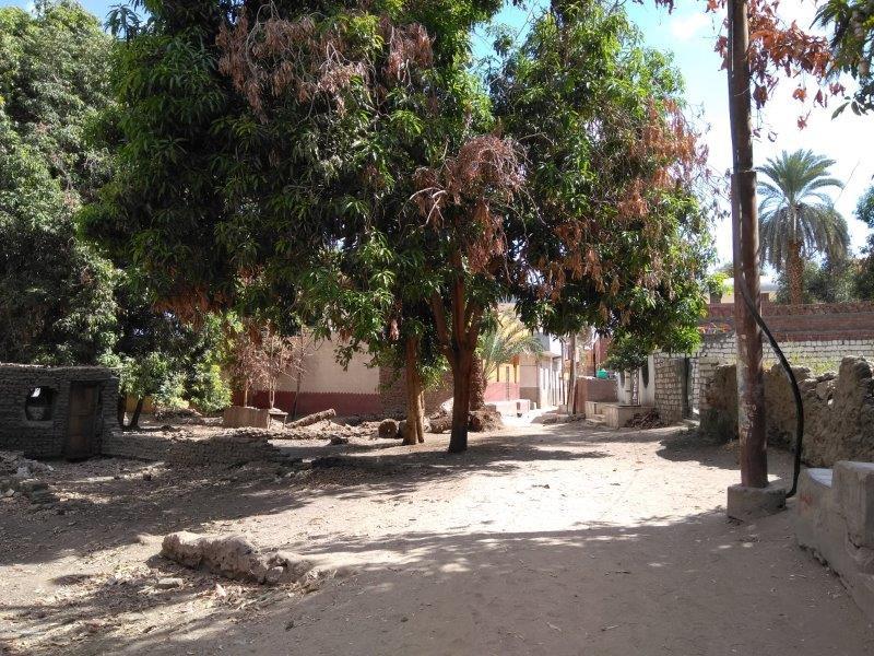 エレファンティネ島のヌビア村