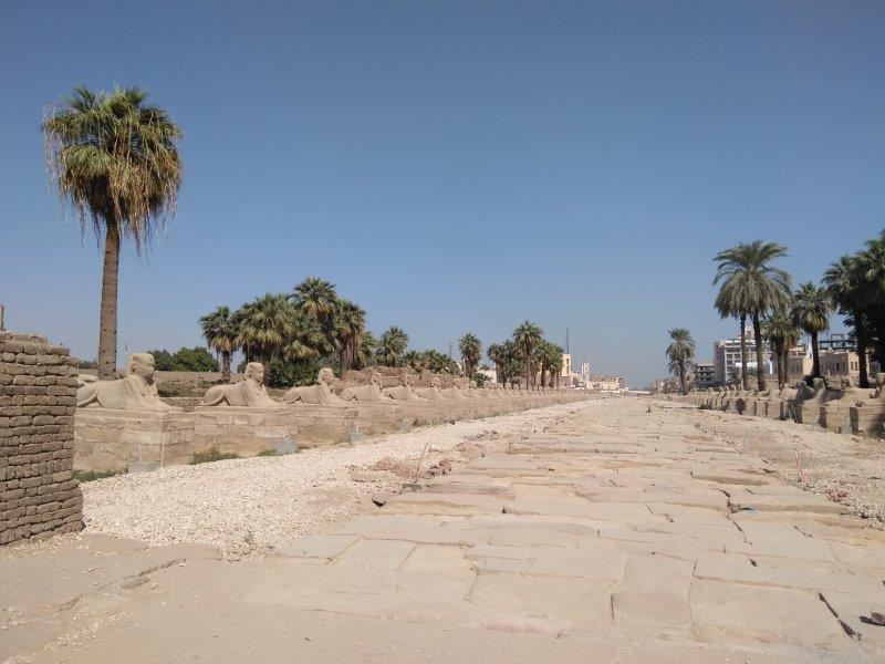 エジプト、ルクソール神殿。スフィンクスの参道。