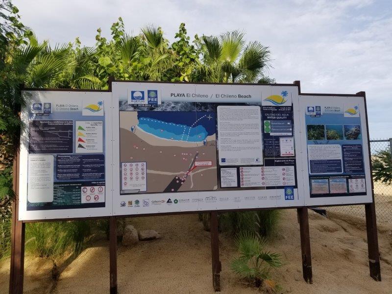 メキシコのロス・カボス。チレノ・ビーチ。