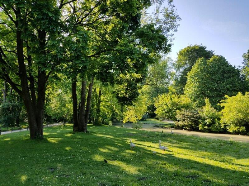 ミュンヘンの英国庭園。Englischer Garten