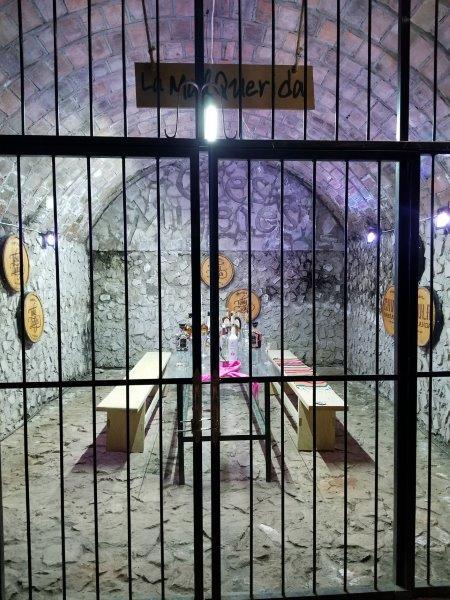 メキシコのテキーラツアー。テキーラ蒸留所のテイスティングルーム。