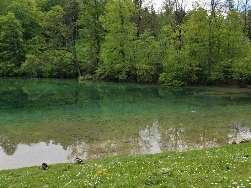 ノイシュバンシュタイン城の麓にあるアルプ湖