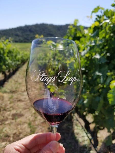 ナパのスタッグス・リープ・ワイナリー (Stags' Leap Winery)。ブドウ畑でワイン。