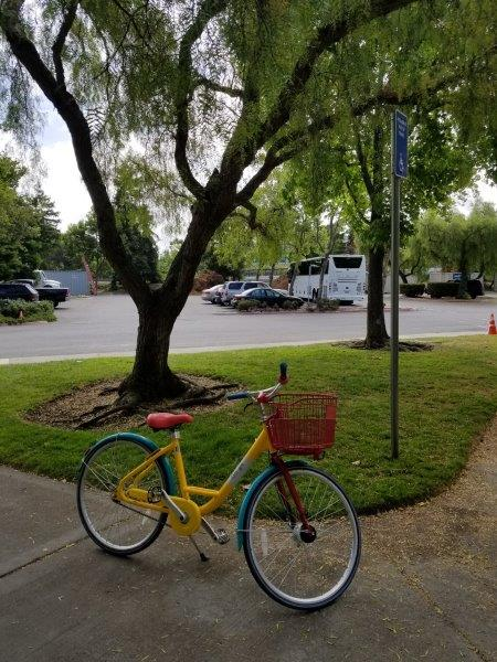 グーグル本社のキャンパス。グーグル自転車。