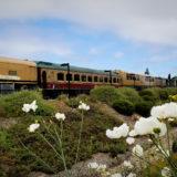 カリフォルニア州・ナパバレー。列車でお食事ができる、ワイントレイン。(Napa Valley Wine Train)