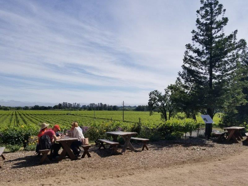 カリフォルニア・ソノマにあるラ・クレマのワイナリー。(La Crema Estate at Saralee's Vineyard)