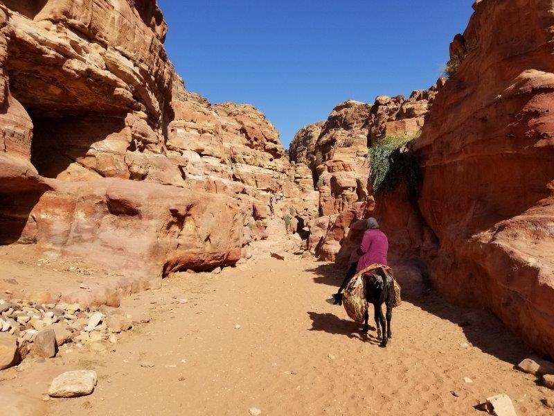 ヨルダン旅行・ペトラのハイキング