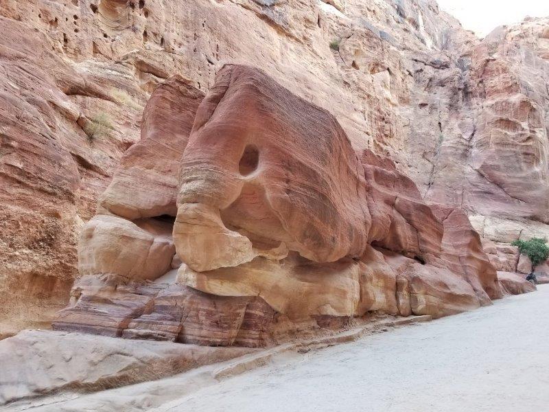 ヨルダン旅行・ペトラのシーク(siq)の像の形の岩。