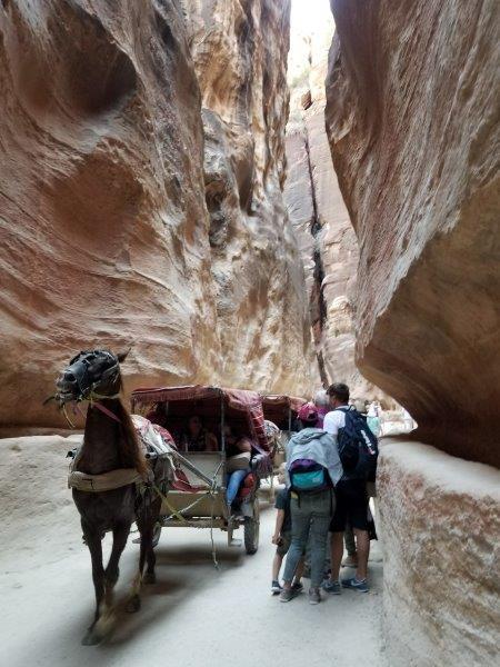 ヨルダン旅行・ペトラのシーク(siq)を走る馬車。