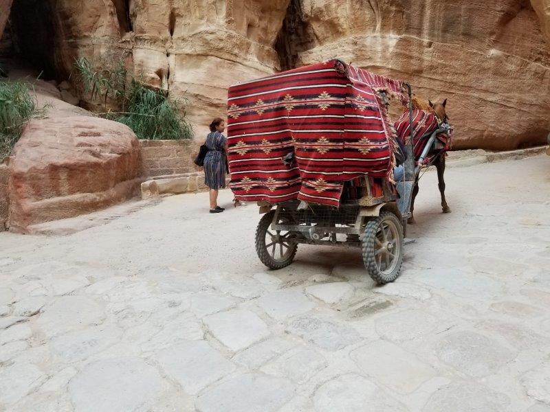 ヨルダン旅行・ペトラのシーク(siq)。を走る馬車。