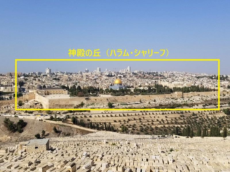 イスラエル旅行・エルサレムの清での丘(ハラム・シャリーフ)